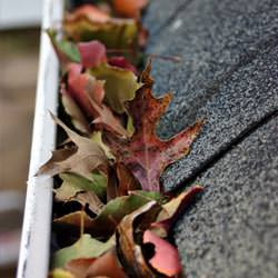 Clogged gutters filled with fall leaves  in Brigham City