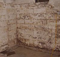 Peeling, Chipping, Basement Wall Coatings in Magna